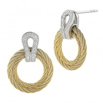 Lady's Two-Toned 18Wg-SS Cable Earrings