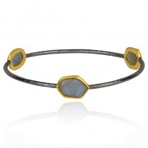 Lady's Two-Tone Ss-24K Bangle Bracelet With Various Shapes Labradorites