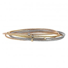 Tri-Color 18K- Ss Cbl Bangle